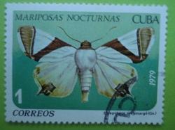 Image #1 of 1 Centavo - Eulepidotis rectimargo