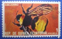 Image #1 of 1 Ekuele - Abejorro