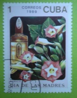 Image #1 of 1 Centavo 1989 - Tabacco