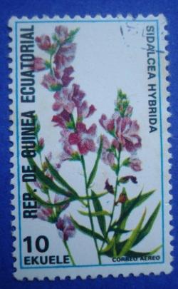 Image #1 of 10 Ekuele - Sidalcea Hybrida