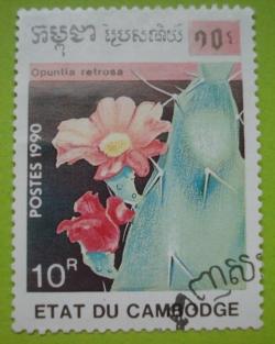 Image #1 of 10 Riels - Opuntia retrosa