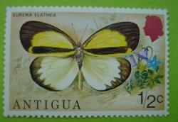 Image #1 of 1/2 C-eurema elathea