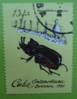 Image #1 of 13 Centavos - Homophileurus Cubanus