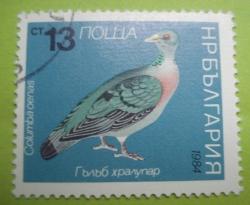 Image #1 of 13 Stotinki - Columba oenas