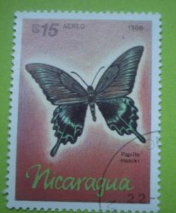 Image #1 of 15 Cordobas - papilio maacki