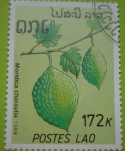 Image #1 of 172 Kip - moridica charautia