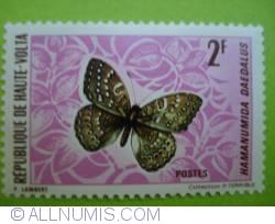 Image #1 of 2 Francs CFA - Hamanumida Daedalus