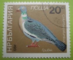 Image #1 of 20 Stotinki - Columba palumbus