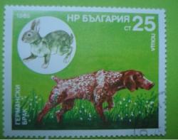 Image #1 of 25 Stotinki - German marriage and Rabbit
