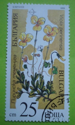 Image #1 of 25 Stotinki - Viola perinensis