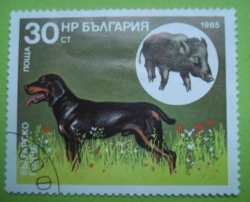 Image #1 of 30 Stotinki - Bulgarian Scenthound and Wild Boar