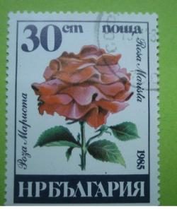 Image #1 of 30 Stotinki - Rosa Marista