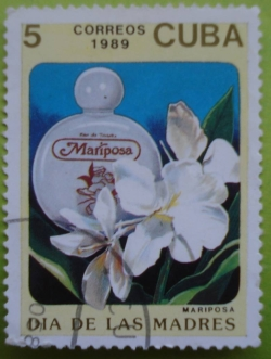 Image #1 of 5 Centavos 1989 - Mariposa