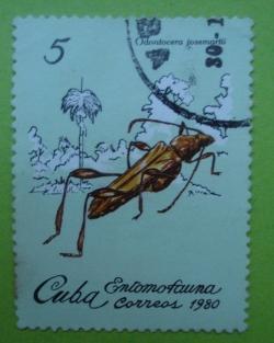 Image #1 of 5 Centavos - Odontocera Josemartii