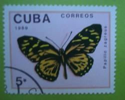 Image #1 of 5 Centavos - Papilio Zageus