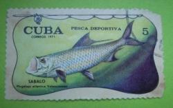 Image #1 of 5 centavos-sabalo