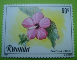 Image #1 of 50 Centimes - pavonia urens