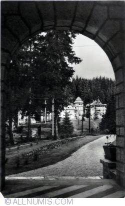 Image #1 of Borsec (1967)