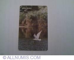 Image #2 of Danube Delta