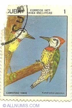 Image #1 of 1 centavo 1977 - Carpentero Verde