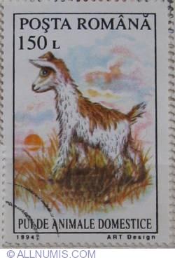 150 lei 1994 - pui de animale domestice