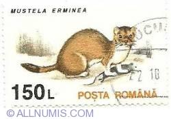 150 lei 1994 - Stoat-Mustela Erminea