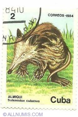 Image #1 of 2 centavos 1984 - Almiqui Solenodon cubanus