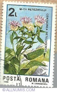 2 Lei 1985 - Centaurea retezatensis