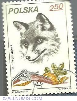 2 zl 1972 - Vulpes Vulpes