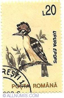 20 lei 1993 - Upupa epops - Hoopoe