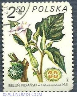 Imaginea #1 a 2.50 zl 1980 - Bieluń indiański (Datura inoxia)