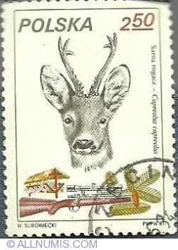 2.50 zl -The European Roe Deer-1981
