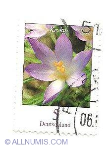 Imaginea #1 a 5 Euro Cent 2005 - Krokus (Elves Crocus)