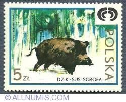 Image #1 of 5 Złotych 1973 - Wild boar (Sus Scrof)