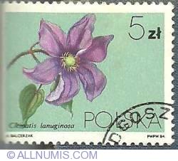 Imaginea #1 a 5 Zloty 1981 - Clematis lanuginosa