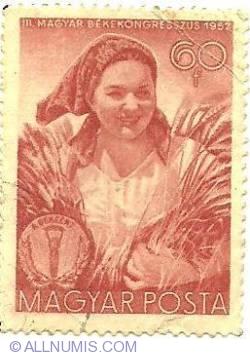 Imaginea #1 a 60 f 1952 - magyar bekekongresszus 1952