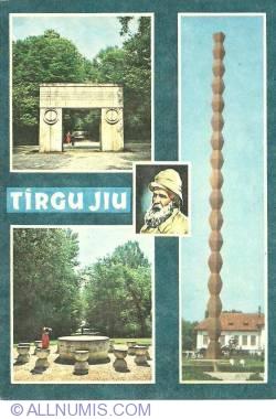 Image #1 of Tg. Jiu - Sculpture by Constantin Brancusi (1991)