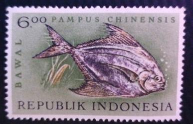 Image #1 of 6 Rupiah - Pampus Chinensis (Bawal)