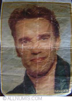 15 - Schwarzenegger