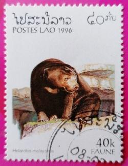 Image #1 of 40 Kip 1996 - Helarctos malayanus