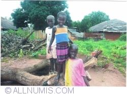 Imaginea #1 a Prietenii Guineei Bissau