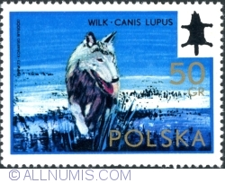 Image #1 of 50 Groszy 1973 - Wolf (Canis Lupus)