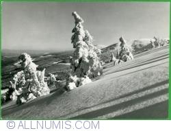 Image #1 of Karkonosze Mountains - Szrenica in winter (1973)