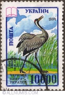 Image #1 of 10 000  Crane 1995