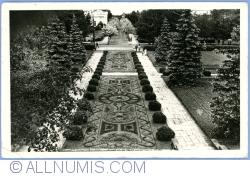 Image #1 of Ciechocinek - Flower carpet (1957)