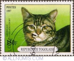 Image #1 of 150 Francs 1997 - American shorthair