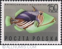 Imaginea #1 a 1,50 złotego 1967 - Rhinecanthus aculeatus