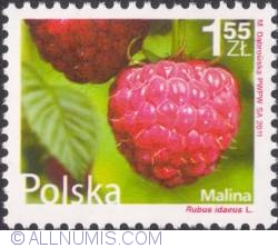 Image #1 of 1,55 złoty 2011 - Raspberries