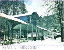 Image #1 of Kudowa Zdrój - The park in The Spa (1977)