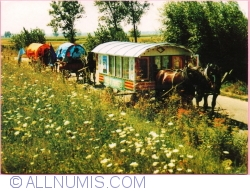 Image #1 of Tarnów - Gypsy Memory Camp (2010)